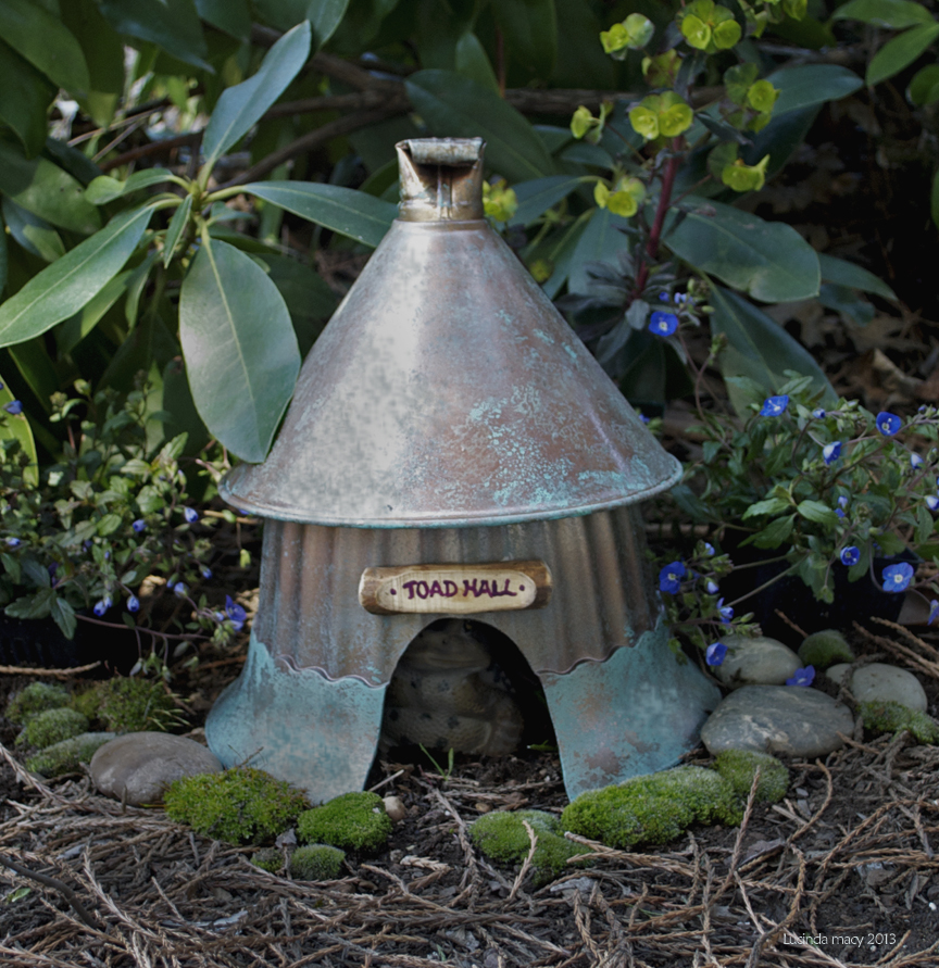 110802_toad_house.jpg